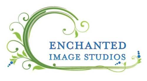 EIS_logo_FINAL